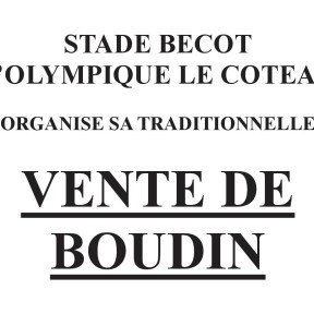 BOUDIN 2020 article
